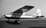 ハミングバードさんが、名古屋飛行場で撮影した野崎産業 172の航空フォト(写真)