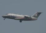 じーく。さんが、羽田空港で撮影したチェコ空軍 Challenger 600の航空フォト(飛行機 写真・画像)