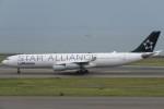 SFJ_capさんが、中部国際空港で撮影したルフトハンザドイツ航空 A340-313Xの航空フォト(写真)