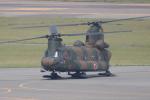 かずまっくすさんが、新潟空港で撮影した陸上自衛隊 CH-47Jの航空フォト(写真)