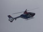 ユターさんが、東京湾で撮影した毎日新聞社 EC135T1の航空フォト(写真)