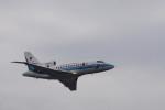senbaさんが、南大東空港で撮影した海上保安庁 Falcon 900の航空フォト(写真)