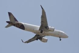 Kilo Indiaさんが、チャトラパティー・シヴァージー国際空港で撮影したビスタラ A320-251Nの航空フォト(飛行機 写真・画像)