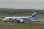 とりてつさんが、新千歳空港で撮影した全日空 787-8 Dreamlinerの航空フォト(写真)