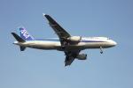 空の旅人さんが、羽田空港で撮影した全日空 A320-211の航空フォト(写真)