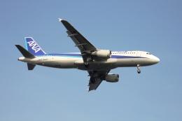 空の旅人さんが、羽田空港で撮影した全日空 A320-211の航空フォト(飛行機 写真・画像)