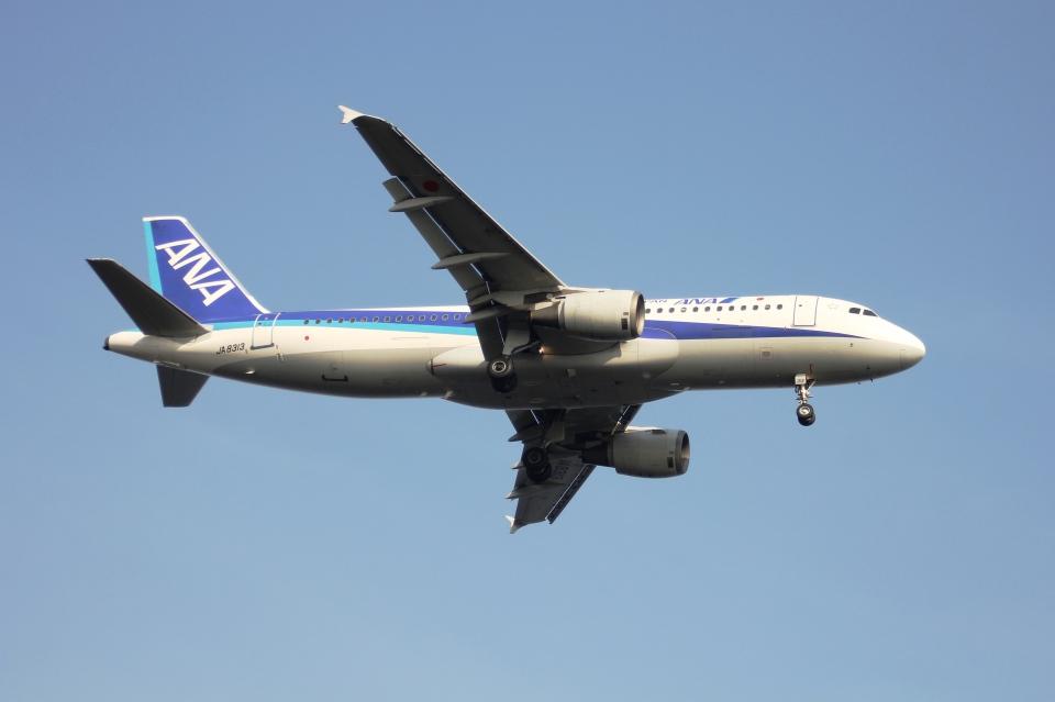 空の旅人さんの全日空 Airbus A320 (JA8313) 航空フォト