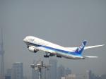 バンチャンさんが、羽田空港で撮影した全日空 787-9の航空フォト(写真)