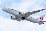 水月さんが、関西国際空港で撮影した日本航空 787-8 Dreamlinerの航空フォト(写真)