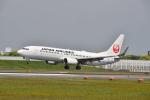 md11jbirdさんが、伊丹空港で撮影した日本航空 737-846の航空フォト(写真)