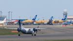 うみBOSEさんが、新千歳空港で撮影したオーロラ DHC-8-201Q Dash 8の航空フォト(写真)