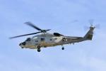 O-TOTOさんが、静浜飛行場で撮影した海上自衛隊 SH-60Kの航空フォト(写真)