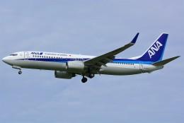 HISAHIさんが、福岡空港で撮影した全日空 737-881の航空フォト(飛行機 写真・画像)