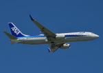 じーく。さんが、那覇空港で撮影した全日空 737-881の航空フォト(写真)
