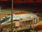 FT51ANさんが、羽田空港で撮影した吉祥航空 A321-211の航空フォト(写真)