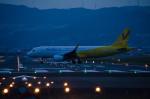nueさんが、伊丹空港で撮影したバニラエア A320-214の航空フォト(写真)