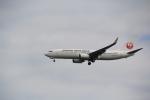 AntonioKさんが、羽田空港で撮影した日本航空 737-846の航空フォト(写真)