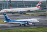 HND_fanさんが、羽田空港で撮影した全日空 A320-211の航空フォト(写真)