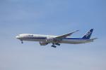 Musondaさんが、ロサンゼルス国際空港で撮影した全日空 777-381/ERの航空フォト(写真)