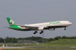 多楽さんが、成田国際空港で撮影したエバー航空 A330-302の航空フォト(写真)