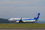 Lucky Manさんが、岡山空港で撮影した全日空 737-881の航空フォト(写真)