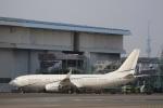 VIPERさんが、羽田空港で撮影したサンマリノ企業所有 737-8JM BBJ2の航空フォト(写真)