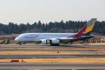 MA~RUさんが、成田国際空港で撮影したアシアナ航空 A380-841の航空フォト(写真)