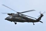 sepia2016さんが、霞ヶ浦飛行場で撮影した陸上自衛隊 UH-60JAの航空フォト(写真)
