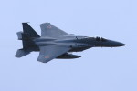 オポッサムさんが、静浜飛行場で撮影した航空自衛隊 F-15J Eagleの航空フォト(写真)
