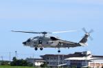 ひこ☆さんが、静浜飛行場で撮影した海上自衛隊 SH-60Kの航空フォト(写真)