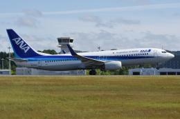 ぶる~すかい。さんが、広島空港で撮影した全日空 737-881の航空フォト(飛行機 写真・画像)
