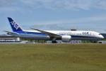 ぶる~すかい。さんが、広島空港で撮影した全日空 787-9の航空フォト(写真)