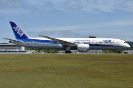 ぶる~すかい。さんが、広島空港で撮影した全日空 787-9の航空フォト(飛行機 写真・画像)