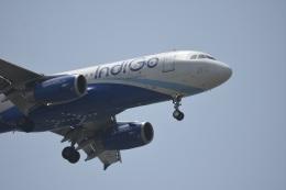 Kilo Indiaさんが、チャトラパティー・シヴァージー国際空港で撮影したインディゴ A320-232の航空フォト(飛行機 写真・画像)