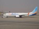 cornicheさんが、キング・ハーリド国際空港で撮影したフライドバイ 737-8KNの航空フォト(飛行機 写真・画像)