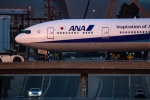LA TSUTOMUさんが、ロサンゼルス国際空港で撮影した全日空 777-381/ERの航空フォト(写真)