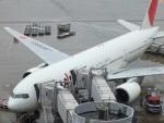 エルさんが、羽田空港で撮影した日本航空 777-246の航空フォト(写真)
