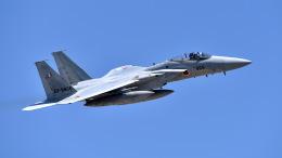 ららぞうさんが、千歳基地で撮影した航空自衛隊 F-15J Eagleの航空フォト(写真)