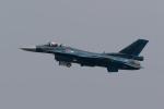 GO-01さんが、名古屋飛行場で撮影した航空自衛隊 F-2Aの航空フォト(写真)