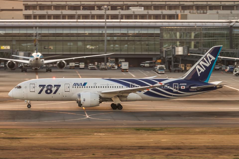 RUNWAY23.TADAさんの全日空 Boeing 787-8 Dreamliner (JA801A) 航空フォト