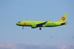 MA~RUさんが、成田国際空港で撮影したS7航空 A320-214の航空フォト(写真)