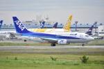 よしポンさんが、成田国際空港で撮影したANAウイングス 737-5L9の航空フォト(写真)