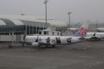 Rsaさんが、高雄国際空港で撮影したチャイナエアライン 737-8FHの航空フォト(写真)