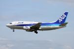徳兵衛さんが、伊丹空港で撮影したANAウイングス 737-54Kの航空フォト(写真)