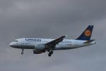 Rsaさんが、フランクフルト国際空港で撮影したルフトハンザドイツ航空 A319-112の航空フォト(写真)