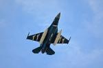 Duffさんが、静浜飛行場で撮影した航空自衛隊 F-2Aの航空フォト(写真)