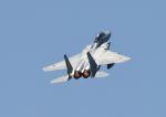 じーく。さんが、米子空港で撮影した航空自衛隊 F-15DJ Eagleの航空フォト(写真)