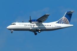 nh747dさんが、羽田空港で撮影したケープ・エア ATR-42-320の航空フォト(写真)