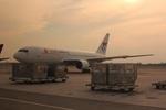 cassiopeiaさんが、スワンナプーム国際空港で撮影したサニー航空 767-269/ERの航空フォト(写真)