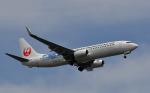 N787EXさんが、羽田空港で撮影した日本トランスオーシャン航空 737-8Q3の航空フォト(写真)